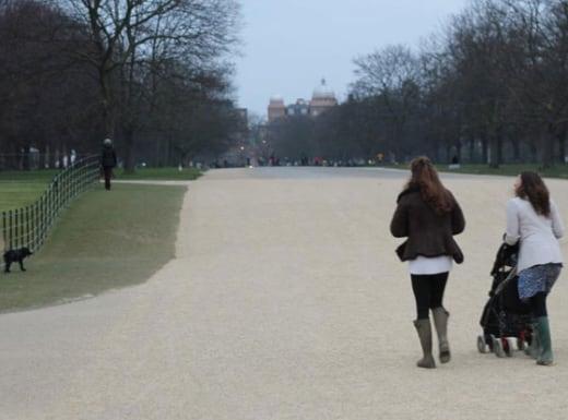 Kate Middleton Walks Dog