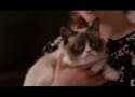 Grumpy Cat's Worst Christmas Ever Trailer: All Pets Are Off!