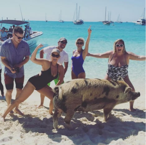 Amy Schumer and Jerry Seinfeld with a pig on the beach
