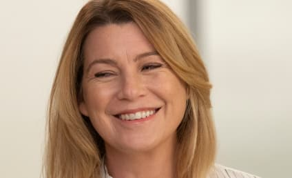 Grey's Anatomy Recap: Meredith Has a Date!