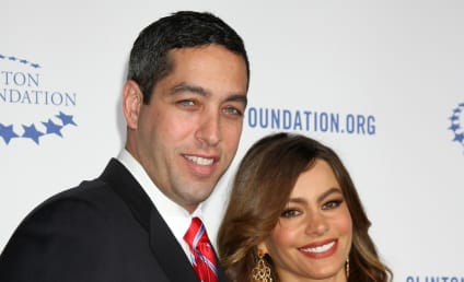 Sofia Vergara Splits with Nick Loeb