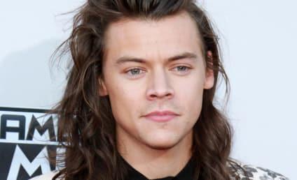 Harry Styles: Zayn Malik's New Song SUCKS!