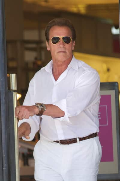 Pic of Arnold Schwarzenegger