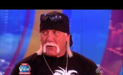 Hulk Hogan Isn't Racist, Just Stupid