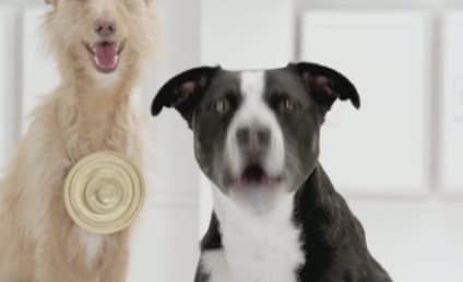 """Volkswagen Super Bowl Ad Preview: Dogs Turn to """"The Bark Side"""""""