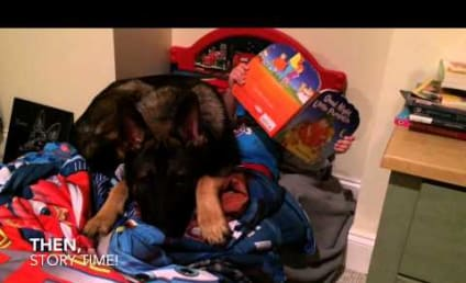 Dog Prays, Reads and Tucks Tiny Owner In to Bed