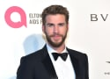 Liam Hemsworth Shares Grim Photo of the Ashes of His Malibu Home