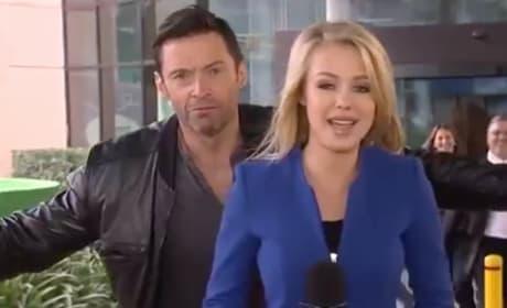 Hugh Jackman Videobombs Live News Report