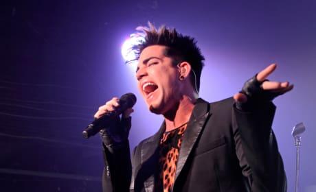 Do you wanna see Adam Lambert as an American Idol judge?