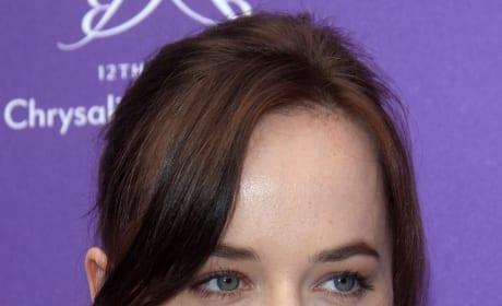 What do you think of Dakota Johnson as Anastasia Steele?
