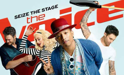 The Voice Live Playoffs Recap: It's Make or Break Time