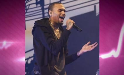 Chris Brown Rehab Trip: Probation Officers Are NOT IMPRESSED!