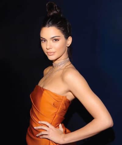 Kendall Jenner: All Skin and Bones for New Photo Shoot