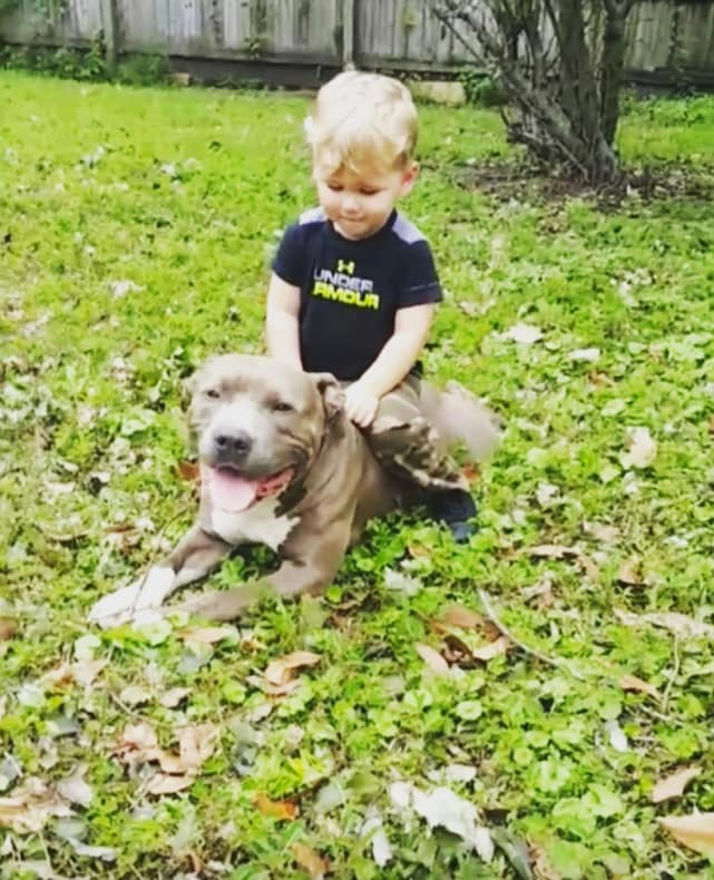 Jenelle evans son kaiser with dog