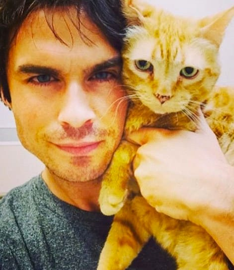 Animal Lover Ian Somerhalder