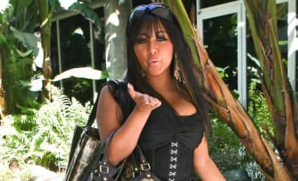 Snooki Offered Job as Porn Spokeswoman