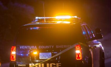 Thousand Oaks Shooting Kills 12 Bar Patrons, Police Sergeant