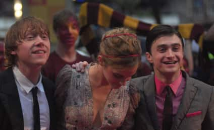 Harry Potter Stars Soak Up Rain, Applause at Movie Premiere