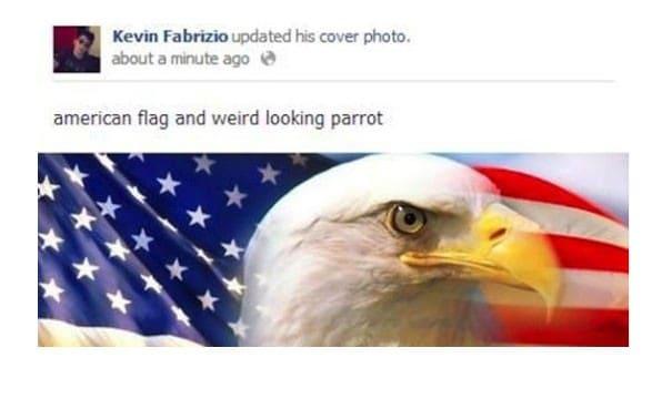 Weird-Looking Parrot!