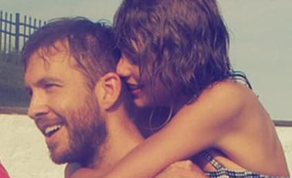 Taylor Swift-Calvin Harris Breakup: Was Singer's Squad to Blame?