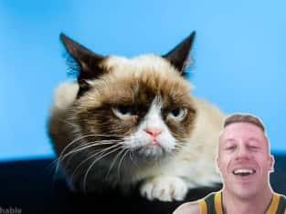 Macklemore and Grumpy Cat
