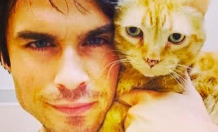 Ian Somerhalder Shares Cat Photo, Kicks Off The Vampire Diaries Season 6