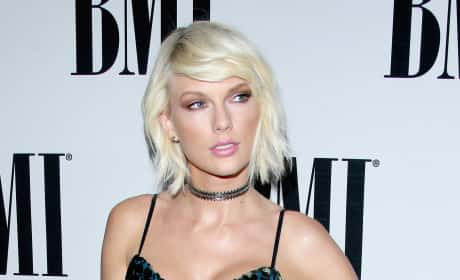 Taylor Swift Posing on the Red Carpet