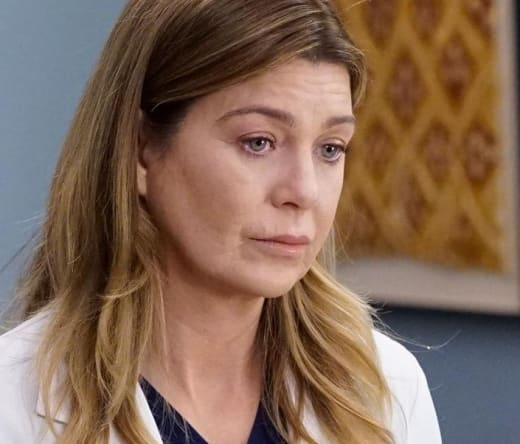 Meredith on Season 17