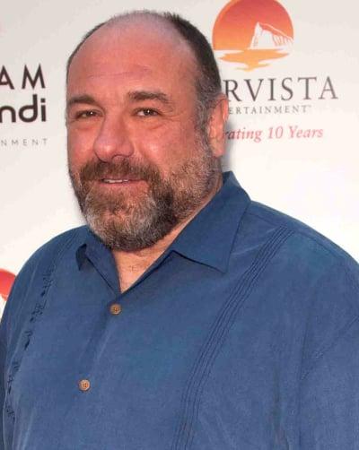 James Gandolfini with a Beard