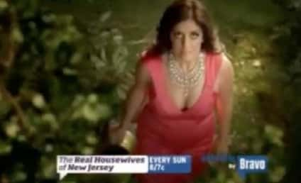 The Real Housewives of New Jersey Season 5: First Trailer!