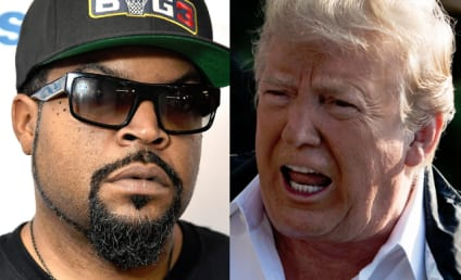 "Ice Cube Taunts Donald Trump with New Track, ""Arrest The President"""