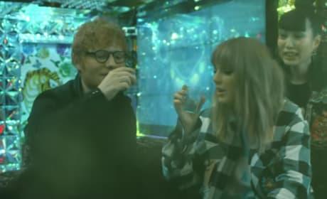 Taylor Swift Endgame Pic