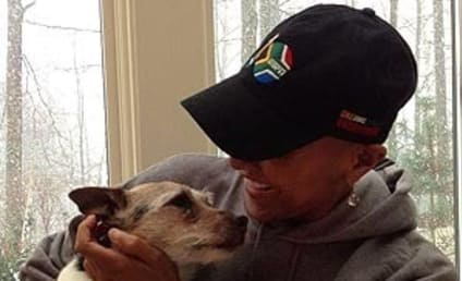 Robin Roberts Celebrates Milestone with Pet Dog