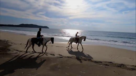 Bachelor in Paradise Season 7 sneak peek - horseback riding in paradise