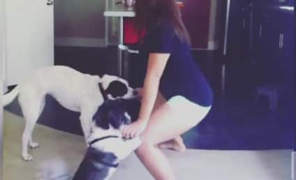 Twogging: People Twerking With Dogs Who Are Straight Up Confused
