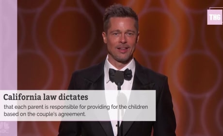 Brad Pitt and Angelina Jolie Clash Over Child Support