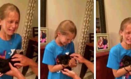 Little Girl Receives Puppy for Birthday, Instantly Melts Down