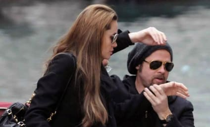 Photographer Arrested for Trespassing Spying on Brangelina, Kids