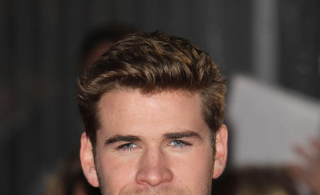 Which Hemsworth brother would you rather...?