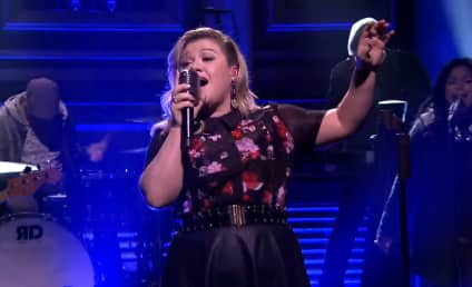 American Idol to Sign Off: Who's Your Favorite Singer?