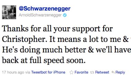 Arnold Schwarzenegger Tweets Gratitude For Support of Injured Son