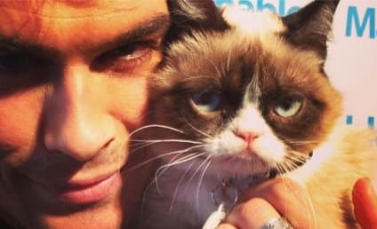 THG Caption Contest: Ian Somerhalder and Grumpy Cat!