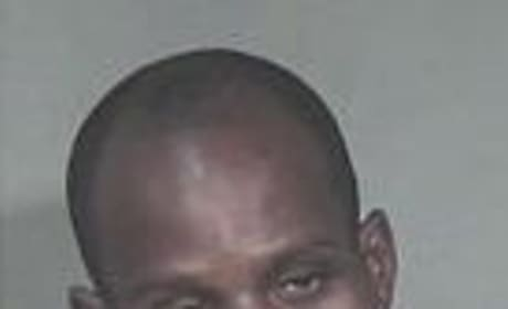 DMX: The Mug Shot