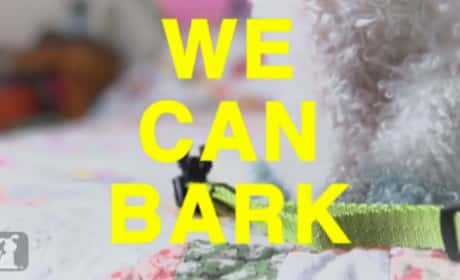 We Can Bark - Miley Cyrus Parody