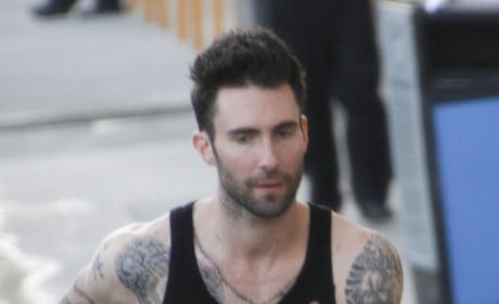 Did Adam Levine diss Adam Lambert?