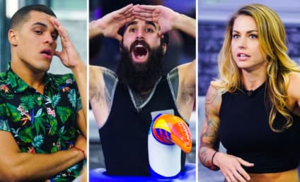 Big Brother Recap: And the Winner is...