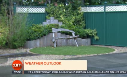 Irish Weatherman Blown Off-Screen; Colleagues LOSE IT with Laughter