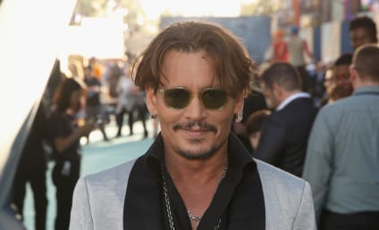 Harry Potter Director Defends Johnny Depp Against Abuse Claims