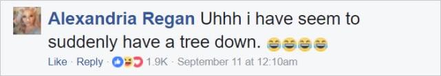 Tree Down!
