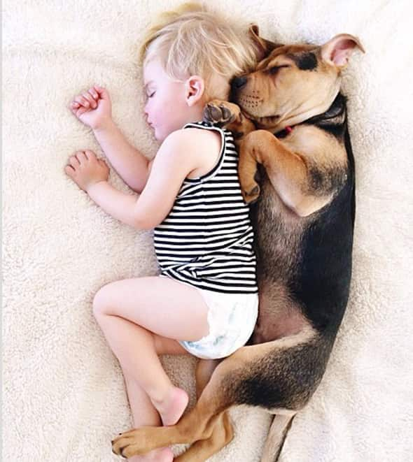 Baby and Dog Take a Nap